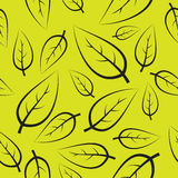新绿色叶子模式 免版税库存图片