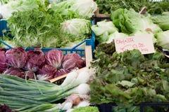 新绿色销售菜素食主义者 免版税库存图片