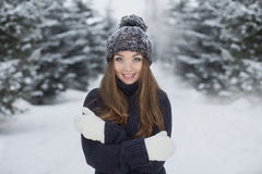新美丽的女孩冬天纵向 免版税库存照片