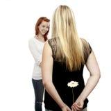 新美丽的红色和金发女孩 库存照片