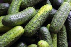 新腌制的黄瓜特写镜头食物背景 库存图片