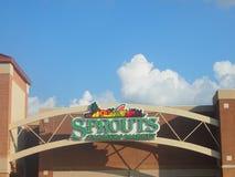 新芽农夫市场在普莱诺得克萨斯U S A 图库摄影