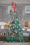 新英格兰圣诞树 库存图片