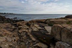 新英格兰岩石海岸线  免版税库存照片
