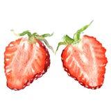 新草莓切片,半莓果,被隔绝,在白色的水彩例证 免版税库存照片