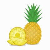 新菠萝和菠萝切片 库存照片