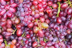 新葡萄果子关闭 免版税库存图片