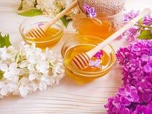 新蜂蜜天然泉石南花淡紫色花compositionon木背景 库存照片