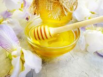 新蜂蜜虹膜花heathsweet在具体背景桌夏天 免版税库存照片