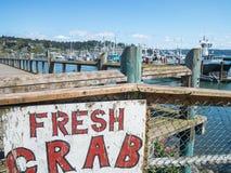 新螃蟹标志 库存图片