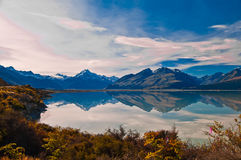 新西兰。山风景 库存照片