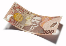 新西兰一百美元 库存照片