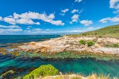 新西兰五颜六色的海岸风景 免版税库存图片
