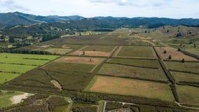 新西兰农田在赫特谷天线 免版税库存照片