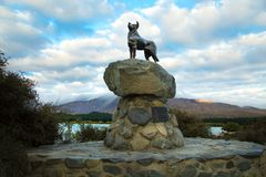新西兰大牧羊犬护羊狗的古铜色雕象 免版税库存照片