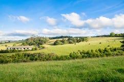 新西兰平安的农田 免版税库存照片