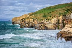 新西兰海岸 免版税库存图片