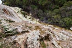 新西兰温泉城罗托路亚 库存照片