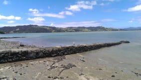 新西兰生活 库存图片