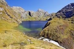 新西兰的壮观的本质 免版税库存照片