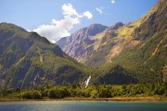 新西兰的狂放的本质 图库摄影