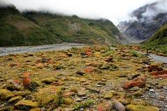 新西兰的美丽的山 免版税库存图片