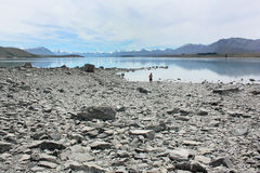 新西兰的蓝色看法 免版税库存照片