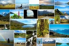 新西兰自然拼贴画  图库摄影