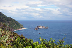 新西兰西海岸 免版税库存照片