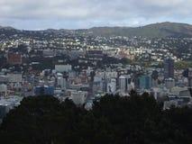 新西兰,北岛-城市视图 免版税库存照片