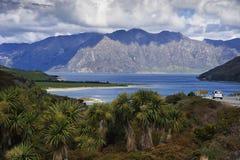 新西兰,哈威亚湖看法  库存照片