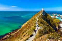 新西兰,矿块点, Catlins海岸 免版税库存照片