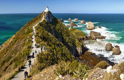 新西兰, Catlins海岸,矿块点 库存图片