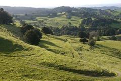 新西兰:与轨道的农田风景- h 免版税库存照片