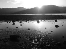新西兰:奥克兰港口海滩Huia 库存照片