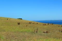 新西兰 库存照片