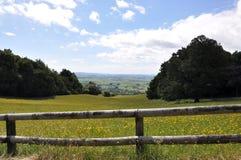 新西兰hilside 免版税库存照片