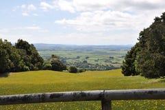 新西兰hilside 库存照片
