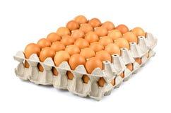 新近地下的自由放养的有机鸡蛋充分的盘子,鸡蛋行我 库存图片