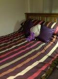 新近地做的床 免版税库存照片