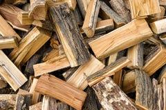 新近地做的木柴在森林里 免版税库存照片