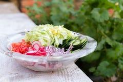 新近地切好的夏天沙拉 在玻璃色拉盘-黄瓜,莴苣,萝卜,蕃茄,红洋葱的许多可口菜 库存照片