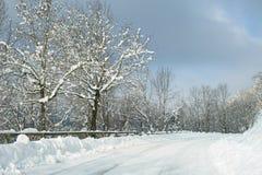新近地划分为下雪 免版税库存照片
