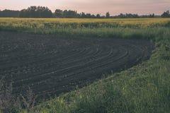 新近地培养的农业领域准备好生长- vintag 免版税库存图片