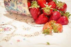 新近地摘的草莓 图库摄影