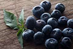 新近地摘的蓝莓在木背景中 与绿色叶子的水多和新鲜的蓝莓在土气桌上 免版税库存照片
