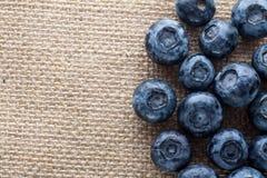 新近地摘的蓝莓在木背景中 水多和新鲜的蓝莓 库存照片