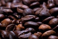 新近地烤咖啡豆在狭窄的焦点 免版税库存照片