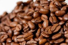 新近地研了咖啡豆烤用咖啡植物果子,白色背景的 免版税图库摄影