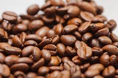 新近地研了咖啡豆烤用咖啡植物果子,白色背景的 免版税库存图片